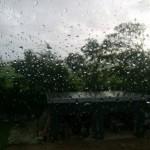 Regentropfen, die ans...