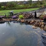 Ein schöner Teich kann auch entzücken...